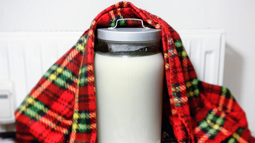 przepis na domowy jogurt naturalny